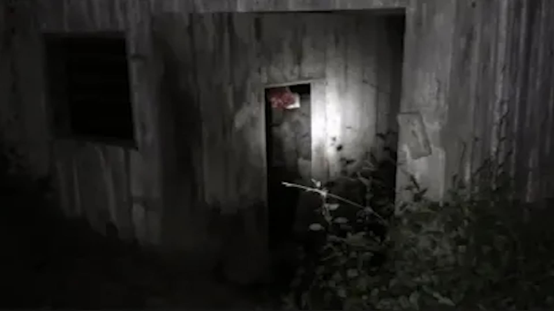 The Fear Footage 3AM